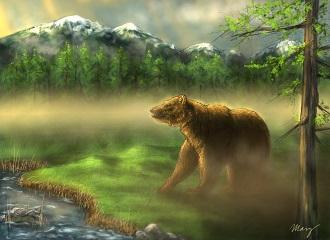 9. Medvěd-náhled
