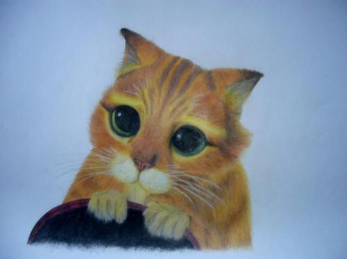 kočka 2 b